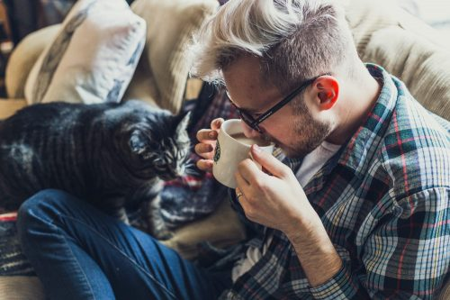 Coffee Relax Cat Sitter